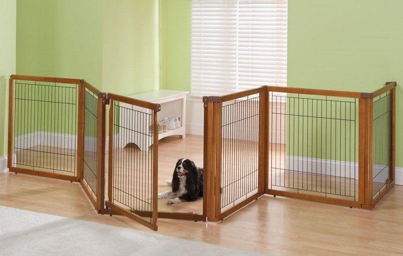 barrière de chien