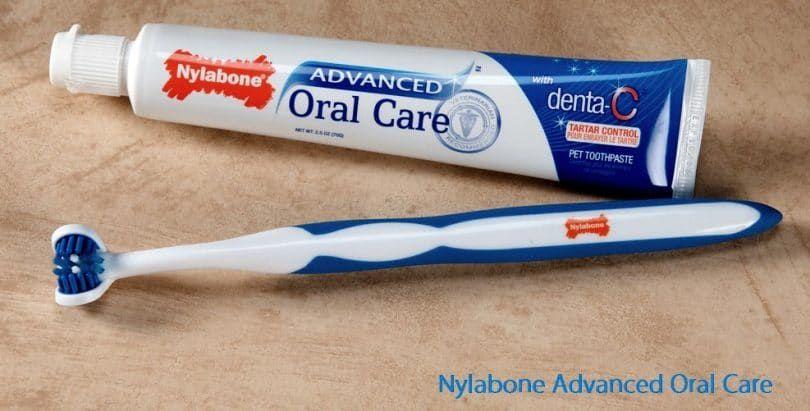 Nylabone Advanced Oral Care 2,5 oz Dentifrice Dog Tartar Control