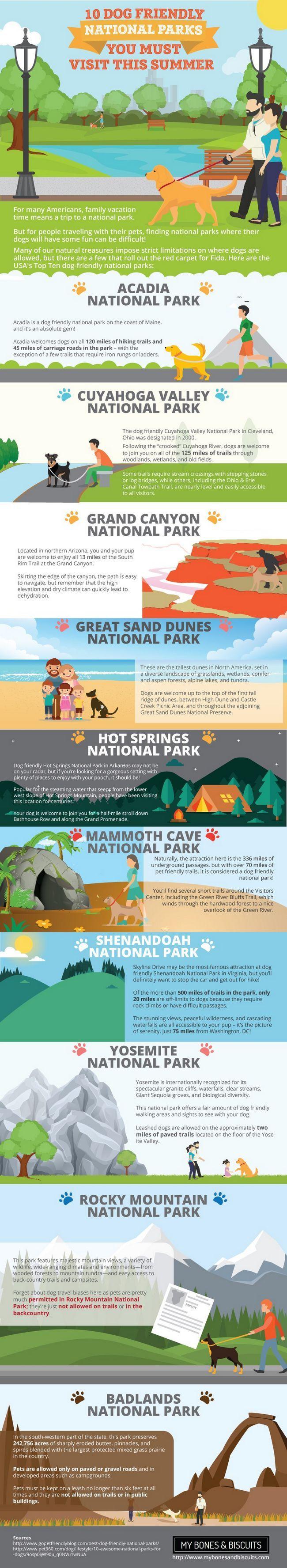 Dog Friendly nous les parcs nationaux: tirer le meilleur parti de votre été!