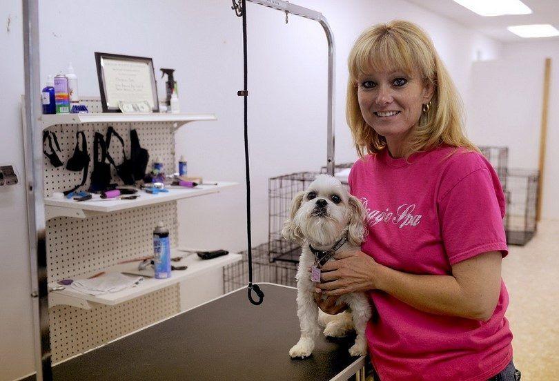 Chien entreprise toilettage: un petit guide pour devenir des chiens de coiffure préférée