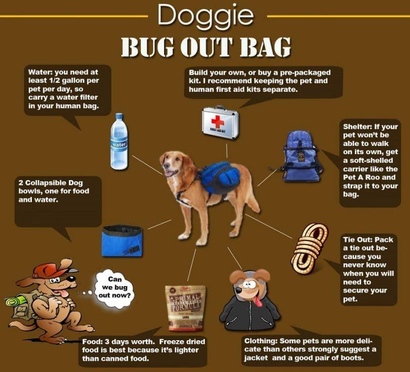 Doggie sac d`évacuation