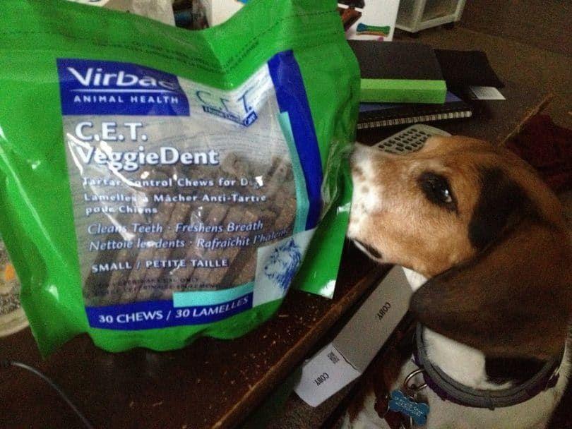 Virbac C.E.T. VeggieDent Chews dentaires
