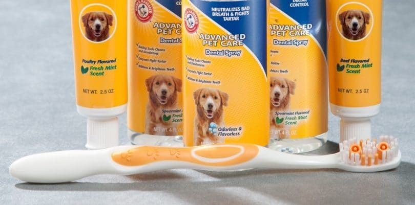 Arm and Hammer Advanced Care Tartare contrôle Dentifrice