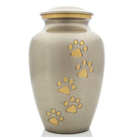 chien urne de crémation