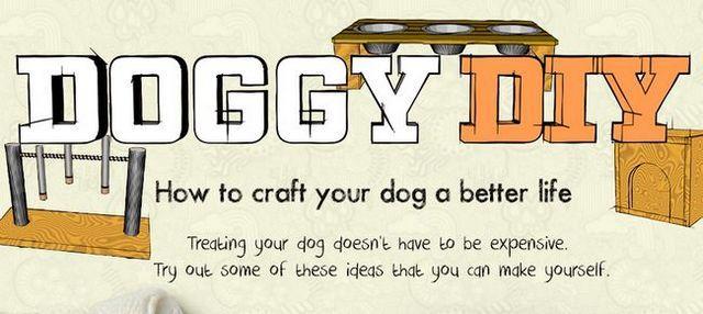 Doggy diy: fabriquer une vie meilleure pour votre chien avec ces projets amusants et faciles