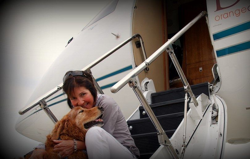 Voler avec un chien