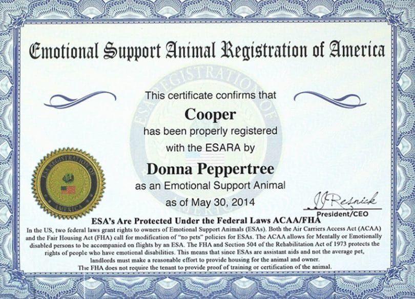 Documentation pour les propriétaires de chiens de soutien affectif