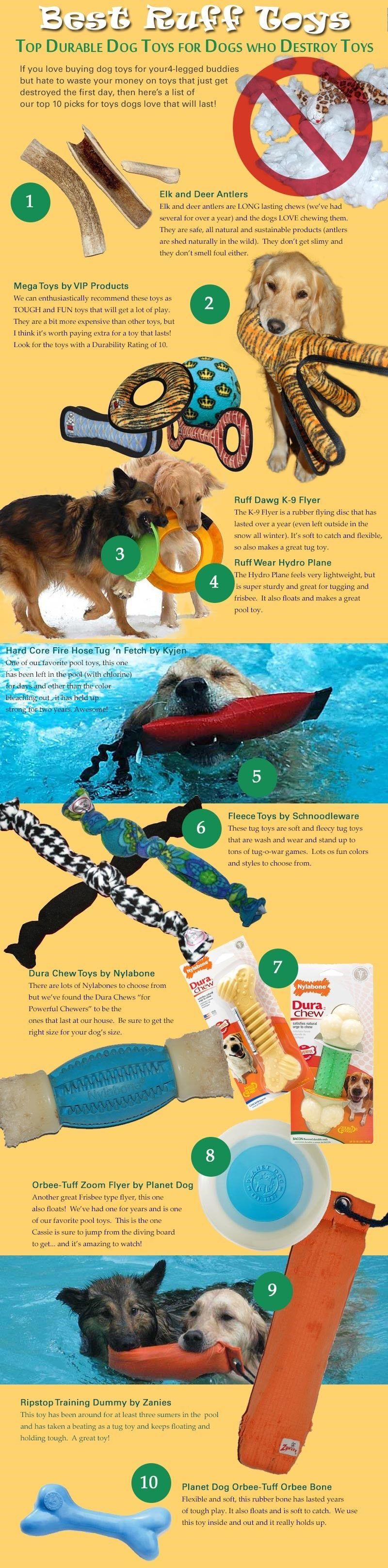 jouets pour chiens infographique