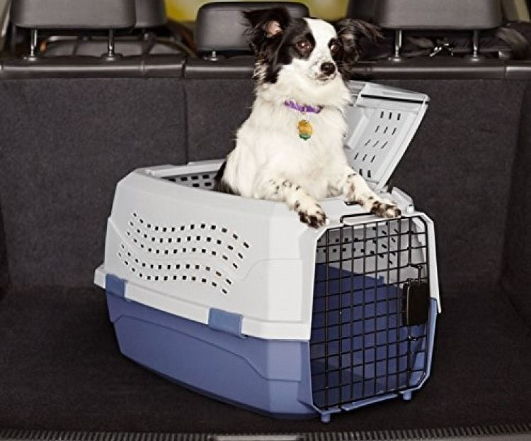 Petmate Two Door Top Load 24 pouces Pet Kennel
