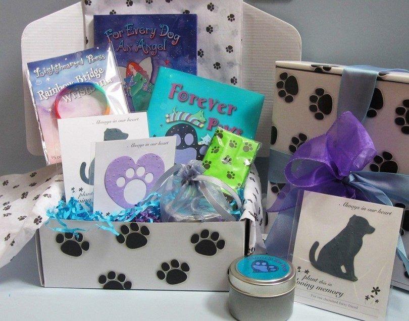 Idées cadeaux pour les amateurs de chiens: moyens créatifs de faire un propriétaire de chien heureux