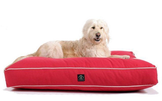 Harry Barker Fabricants Eco-Friendly Dog Products