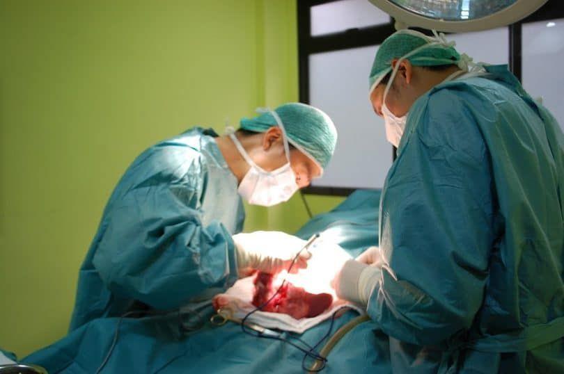 Traitement pour hemangiosarcoma en chirurgie Dogs;