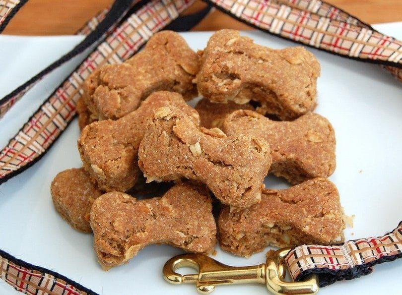 chien biscuits au beurre d`arachide