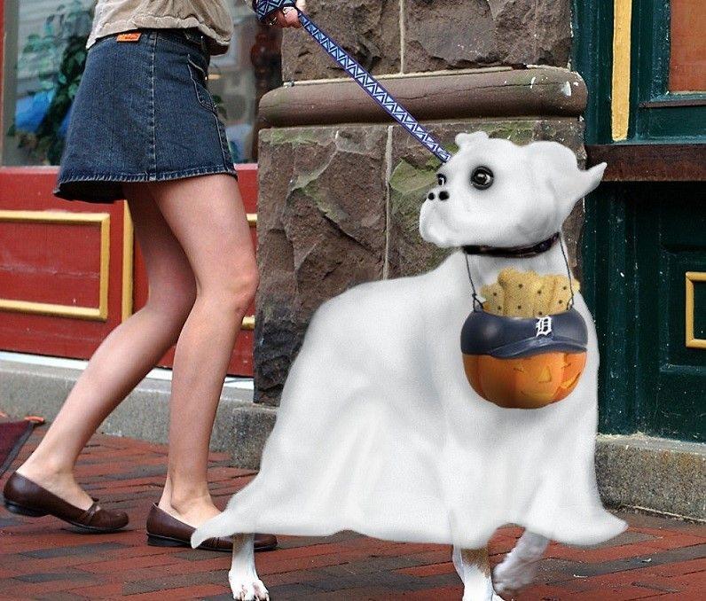 costume de chien fantôme