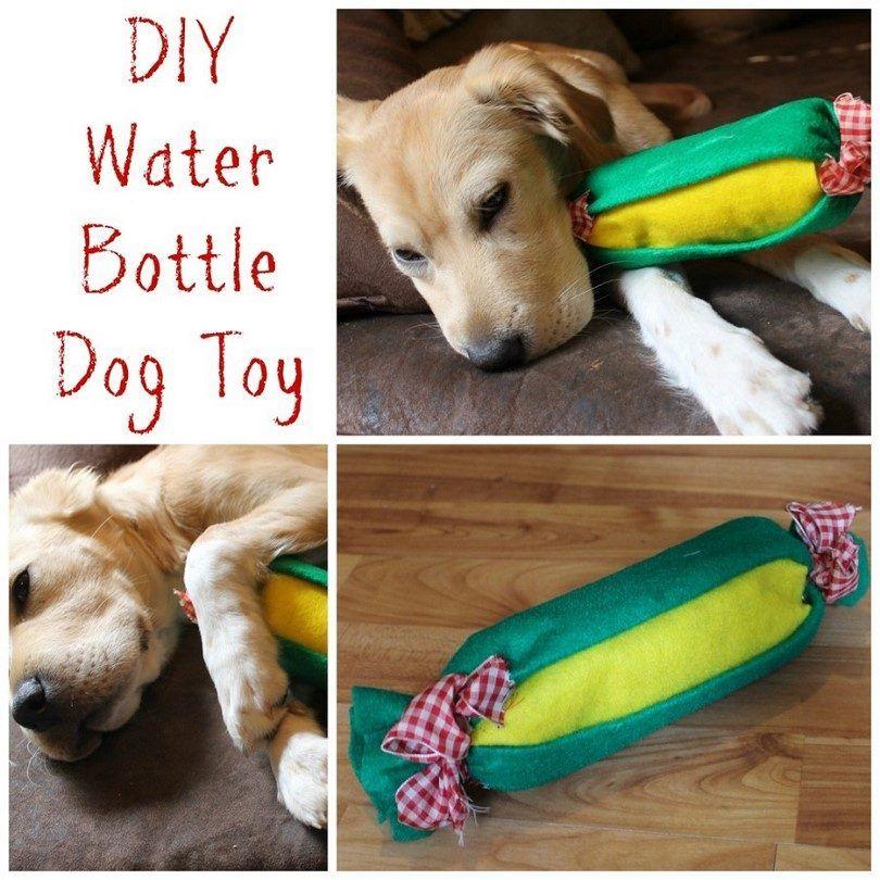 eco maison jouet pour chien