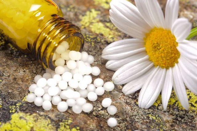 Les remèdes homéopathiques et essences de fleurs pour le bien-être physique et émotionnel de votre chien