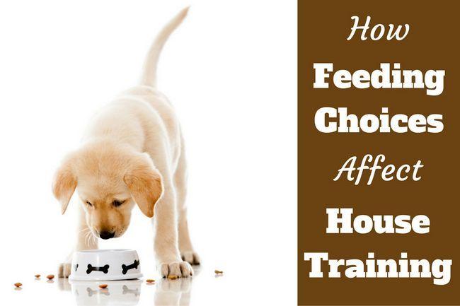 Maison de la formation: choix d`alimentation font une énorme différence