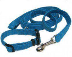 Une laisse de chien en nylon bleu et collier