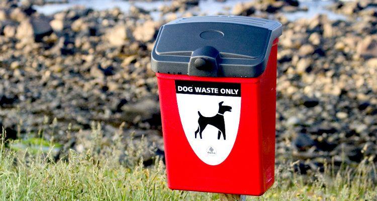 Comment Dog Pooper Scoopers sauvons notre planète