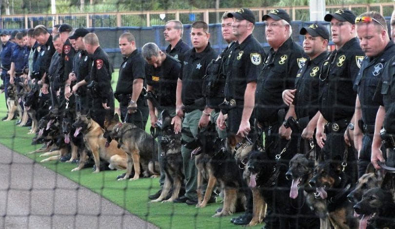 Bergers que les chiens de police