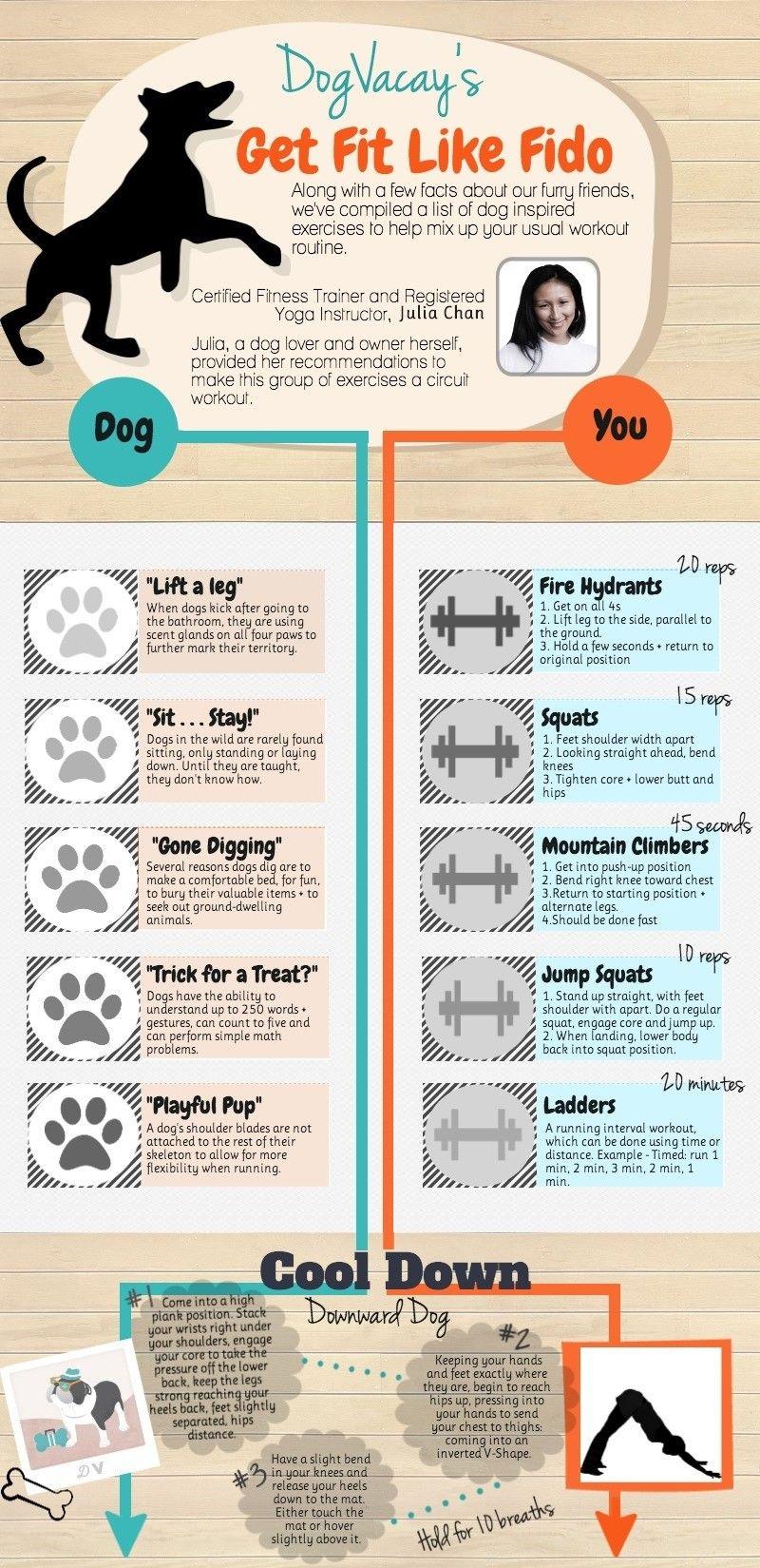 chien d`exercice et vous-même