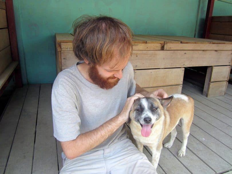 Adoption d`un processus de chien