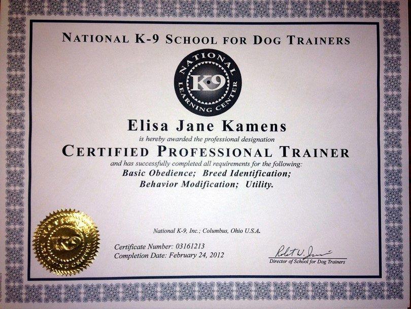 Certification d`entraîneur de chien