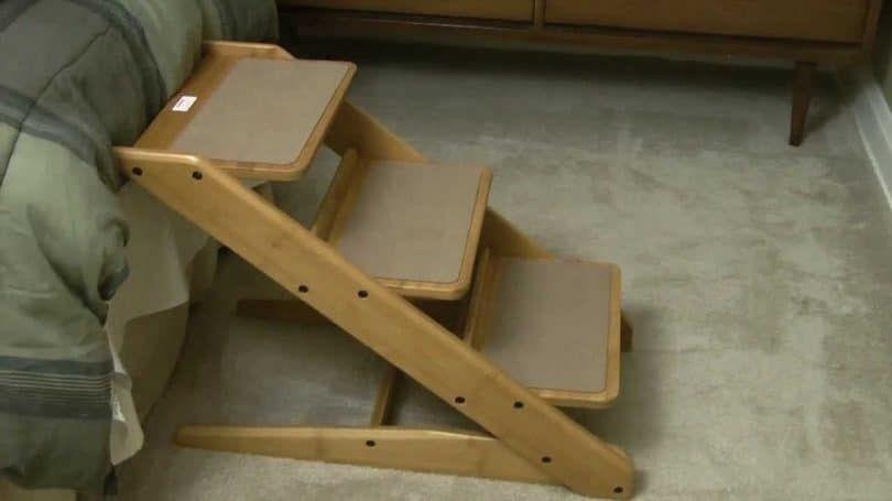 Bois escaliers chien