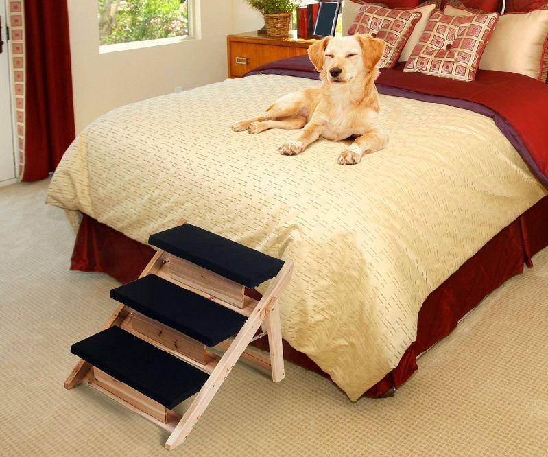 Avantages d`escaliers chien