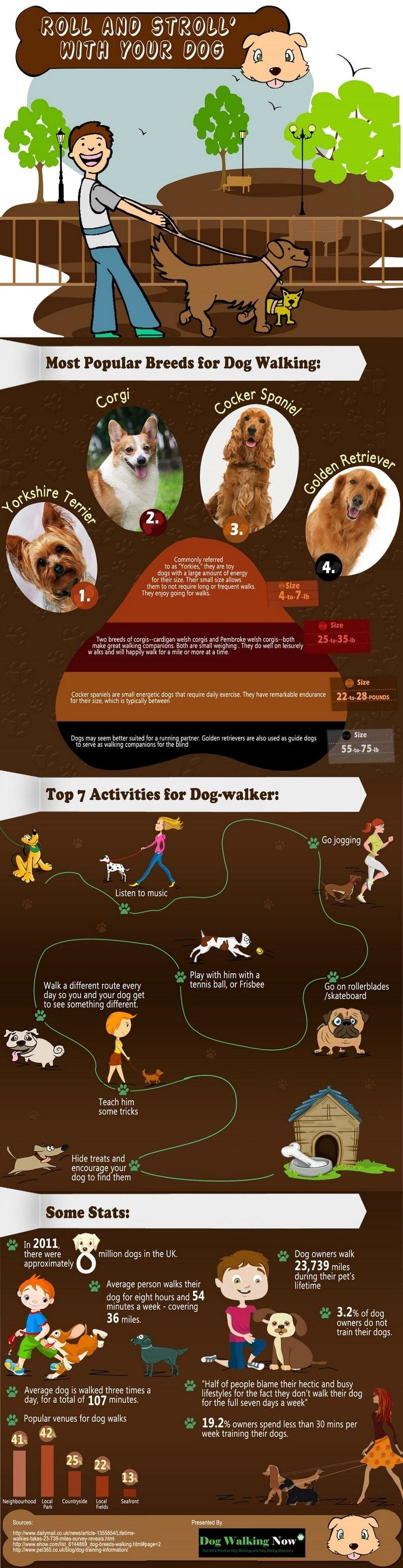 Rouleau promenade avec votre chien