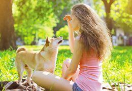 Femme assise à l`extérieur câline un chien avec une friandise