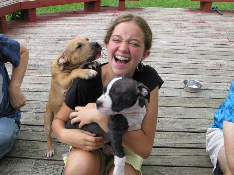 Comment favoriser un chien: ce qu`il faut pour être un bon parent