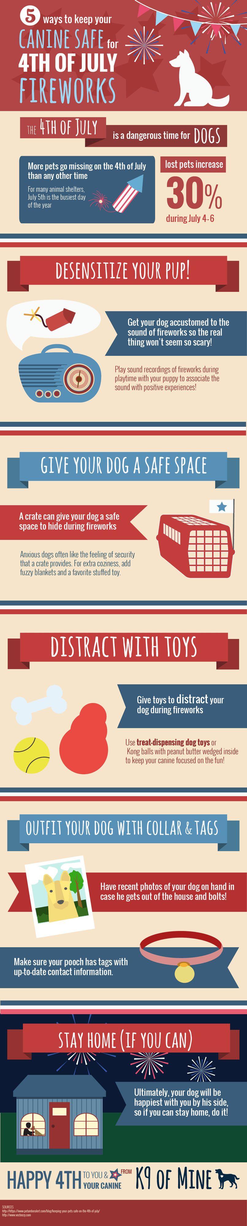 Comment garder votre chien en toute sécurité pour le 4 juillet feux d`artifice [infographie]