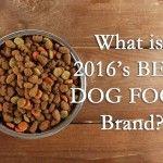 Quelle est la meilleure marque de nourriture pour chiens - Top 10 aliments pour chiens pour Puppy
