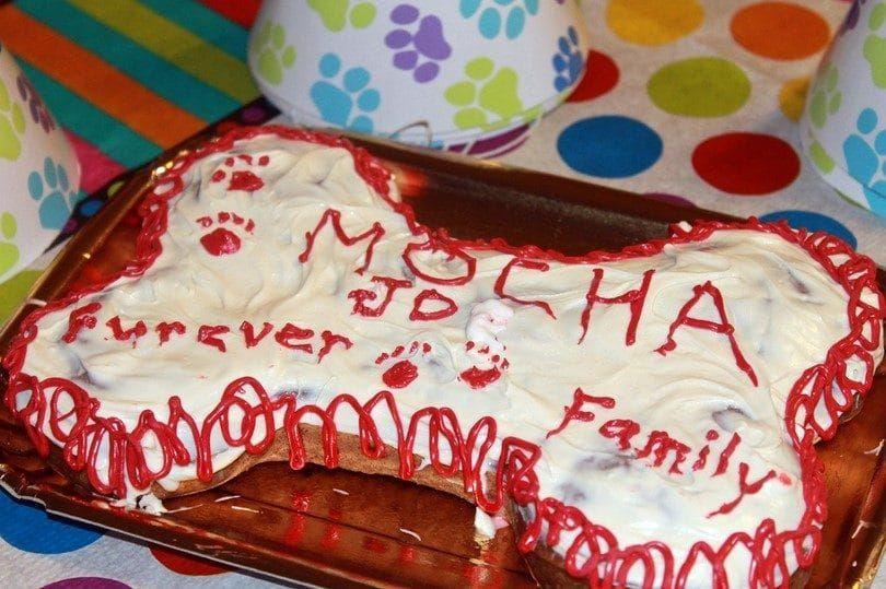 Anniversaire de l`adoption gâteau de chien