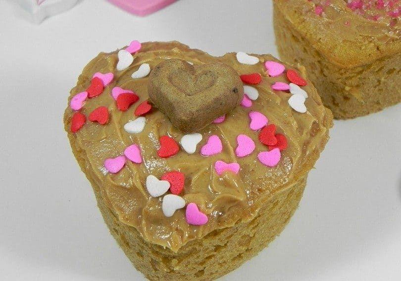 Valentine gâteaux chiot