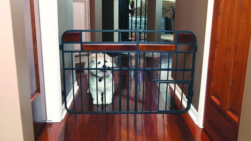 Comment faire une porte de chien à partir de zéro