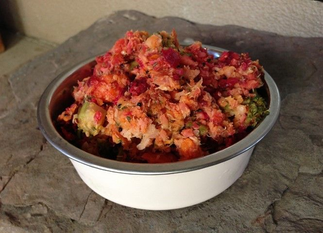 Nourriture pour chiens maison