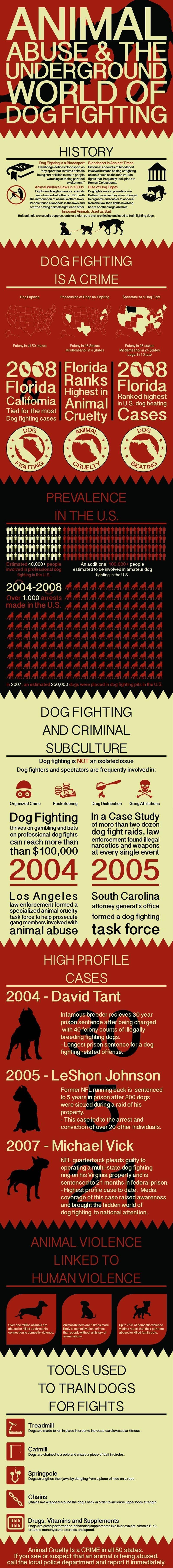 Violence envers les animaux infographique