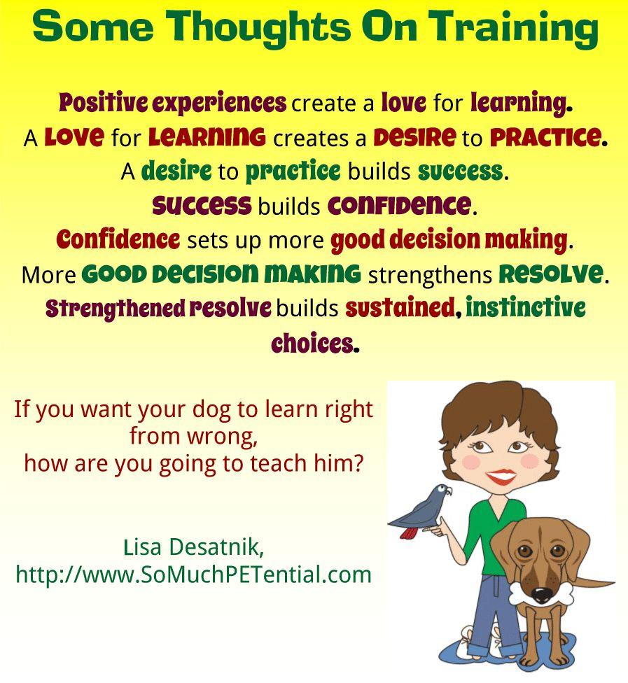 Comment prendre soin d`un chien: conseils et stratégies pour les propriétaires de chiens efficaces