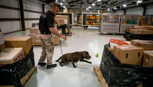 Nouveau $ 12 Million Facilité T.S.A Formé Bombe chiens renifleurs