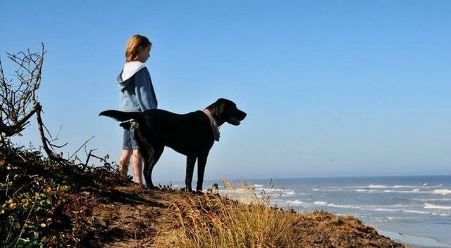 De nouvelles preuves que les chiens aident à prévenir l`asthme