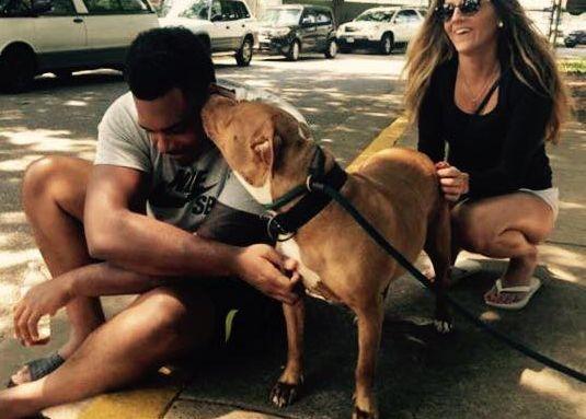 Nfl joueur entre dans un abri, demande pour le chien le plus «pas-si-adoptable `