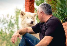 Cesar Millan regardant un chien
