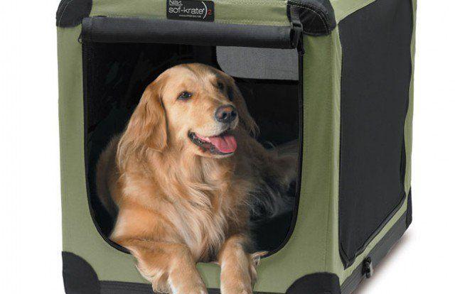 Noz2noz caisses de chien: sof-Krate animal n2 revue de la maison