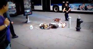 Star tiré par NYPD