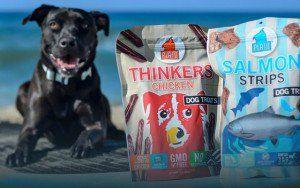 Platon Pet Treats rend les produits sains et redonne à de nombreux organismes de bienfaisance