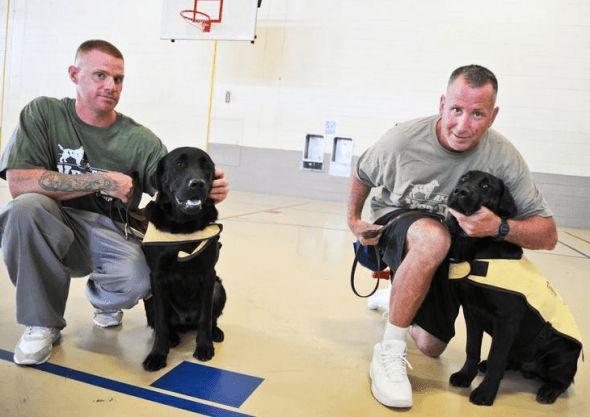 Les détenus à trouver un nouvel objectif en tant que formateurs de chiens de service
