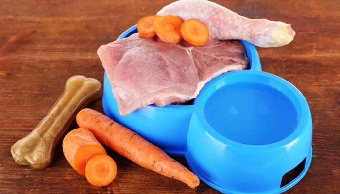 BARF Diet pour chiens