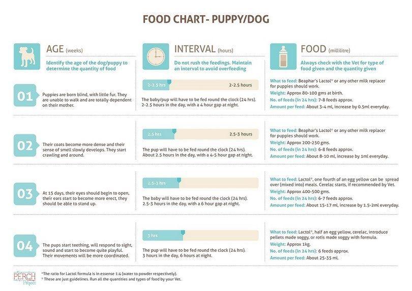 Puppy tableau des aliments